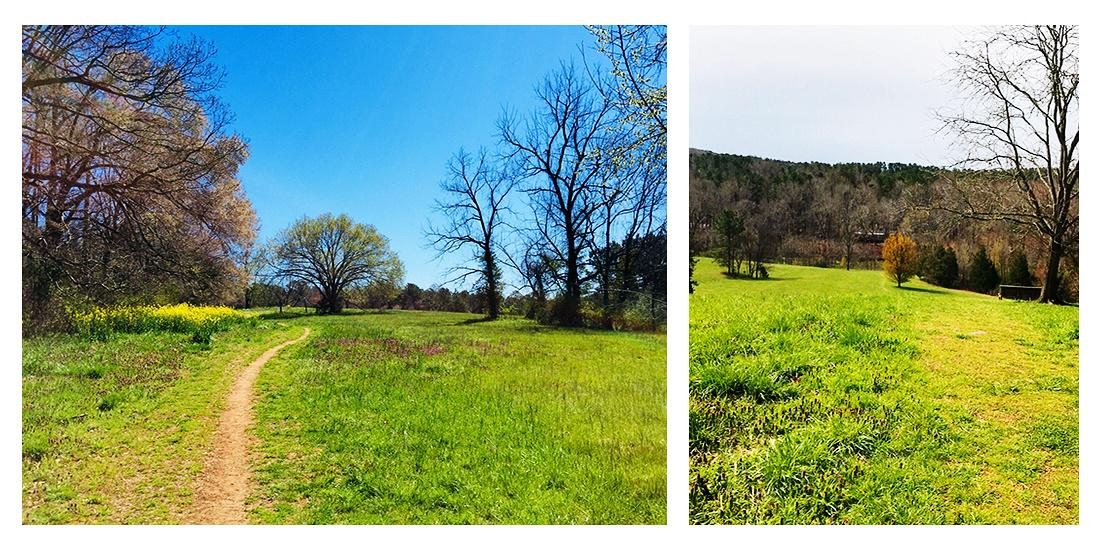 """""""Merritt's Pasture"""", """"Morgan Creek Trail"""", """"Chapel Hill Family Photos"""", """"Chapel Hill Bridal Portraits"""", """"Chapel Hill Engagement Photography"""""""