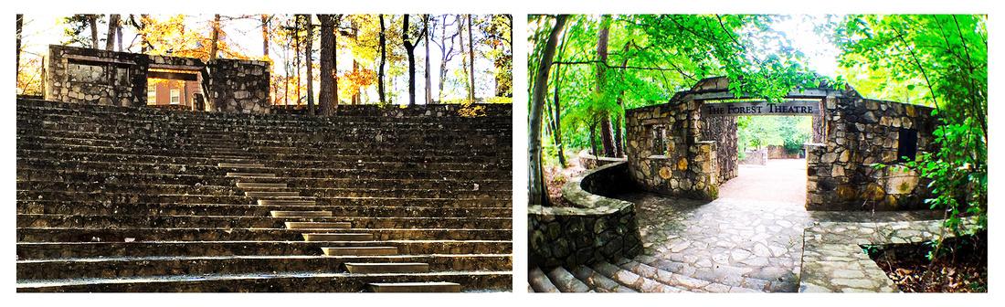 """""""Forest Theatre"""", """"Chapel Hill"""", """"Chapel Hill NC engagement photos"""", """"Chapel Hill NC Wedding Venues"""